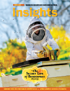Insights Spring 2015 Cover